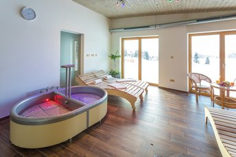 EA Mountain hotel Hajenka*** - wellness center